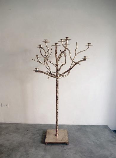 Hiver Candelabra Tree